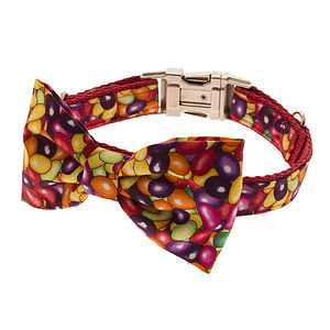 Jelly Bean Bow Tie Dog Collar - dog collars