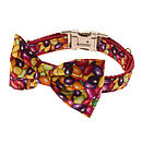 Jelly Bean Bow Tie Dog Collar