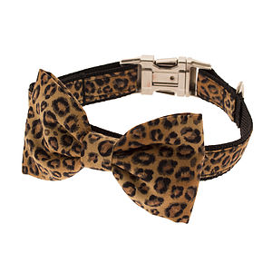 Leopard Bow Tie Dog Collar - pet clothes & accessories