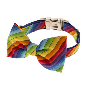 Rainbow Bow Tie Dog Collar - dog collars