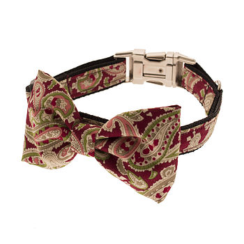 Paisley Passion Bow Tie Dog Collar