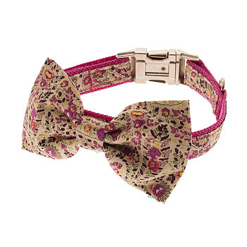 Paisley Bow Tie Dog Collar