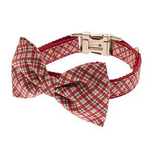 Thin Plaid Bow Tie Dog Collar - walking