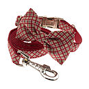 Red Plaid With Matching Lead