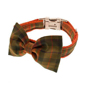 Rustie Bow Tie Dog Collar