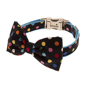 Spotty Bow Tie Dog Collar - walking