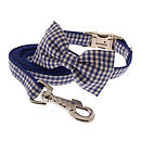 Blue Gingham with Matching Lead