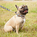 Bones Bow Tie Dog Collar