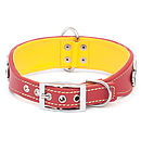 Luxury leather dog collar