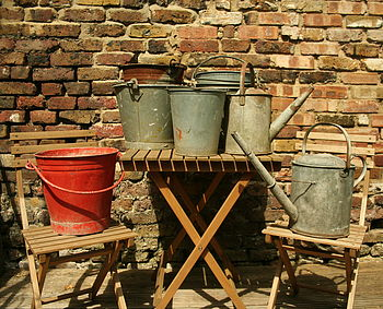 Vintage Buckets And Watering Cans