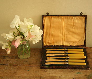 Six Butter Knives In A Case