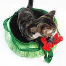 Cat Bed Basket With Poppy Flower