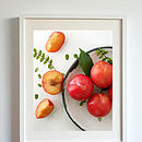 Garden Plums Photographic Print