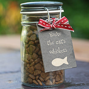 Delicious Cat Treats In Storage Jar - food, feeding & treats