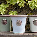 Chartwell Green, Duck Egg Blue & Ivory Kew Long Tom Pots