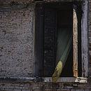 Window, Venice, Italy, Signed Art Print