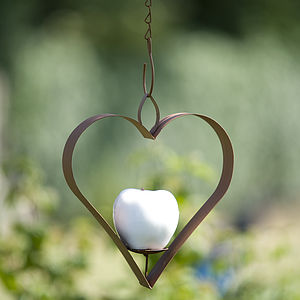 Apple Bird Feeder - birds & wildlife