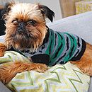 Moustache Patterned Knitted Dog Jumper