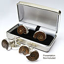 Ammonite Sterling Silver Cufflinks Darker