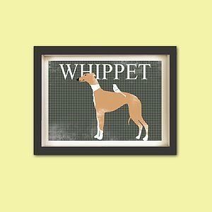 Brown Whippet Dog With A Bird Print