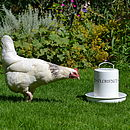 Personalised Chicken Drinker