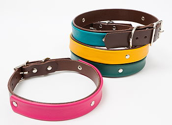 Handmade leather dog collars with brown main leather and dark pink, turquoise, yellow and green accent leather