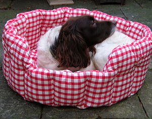 Machine Washable Gingham Dog And Cat Beds - cats