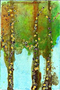Bugs Again Artwork - mixed media & collage