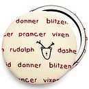 ''Reindeer Names'' Stocking Filler Christmas Mirror