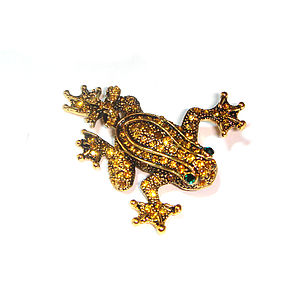 Golden Frog Brooch - pins & brooches