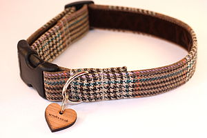 Teddy Tweed Dog Collar - walking