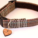 Teddy Tweed Dog Collar