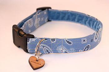 Paisley Pup In Denim
