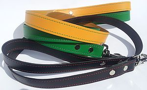 Luxury Leather Dog Lead - dogs