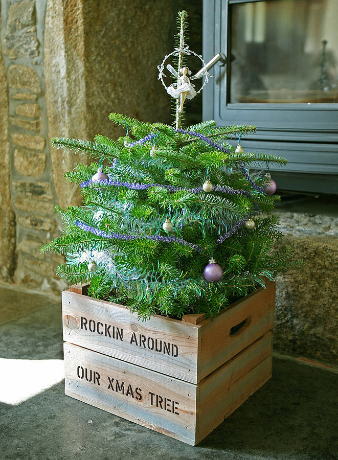 personalised christmas tree planter crate by plantabox ...