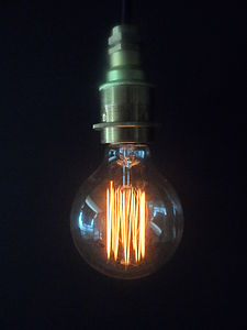 Vintage Cage Globe G80 Lightbulb - lighting accessories