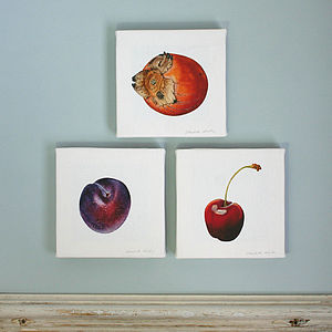 Plum, Cherry And Persimmon Canvas Prints - canvas prints & art