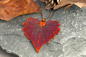 Large Cotton Wood Leaf Necklace - women's jewellery