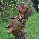 Lonan Tweed Dog Coat