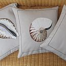 Hand painted Nautilus Shell Cushion