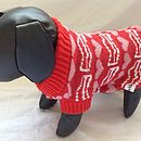 Mr Digby Loves Bacon Knitted Dog Jumper