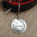 Silver Dogeared I.D. Pet Tag 32mm