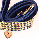 D'arcy Tweed Dog Collar And Velvet Lead By Scrufts