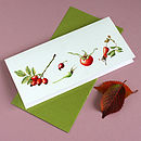 'Rose Hips' Botanical Autumn Card