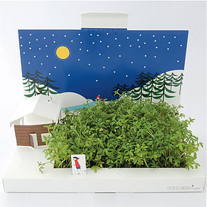 Winter Wonderland Pop Up Card - gardening