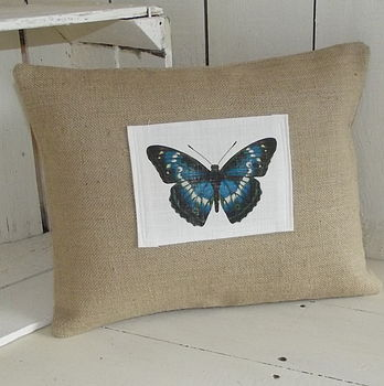 Teal Butterfly Cushion