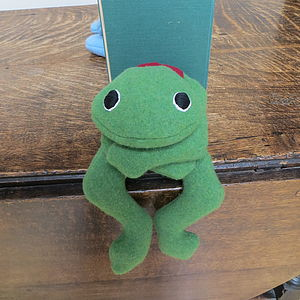 Personalised Bean Bag Frog - bookends