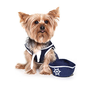 Dog's Sailor Shirt With Hat