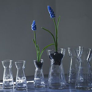 Etched Bess Bulb Vases - decorative accessories