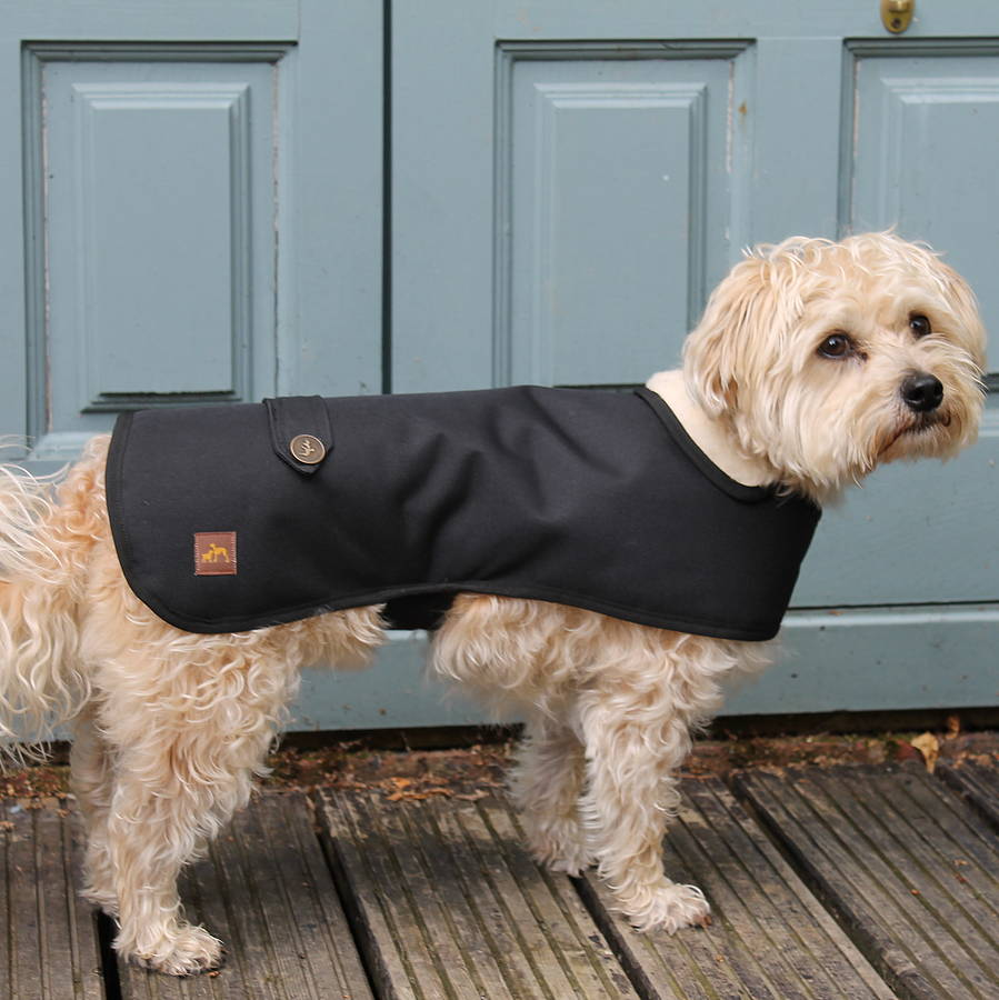 Waterproof Winter Dog Coat By Country And Twee Notonthehighstreet Com
